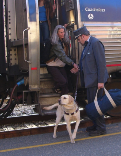 Service Animals on Amtrak | They Provide Full Support