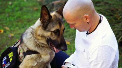 Service Animals for Veterans | How They Can Help