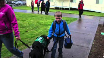 US Service Animals - Service Dogs for Autism | How They Can Help & How To Qualify