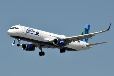 ESA on JetBlue: What Is JetBlue's Policy on Emotional Support Animals?