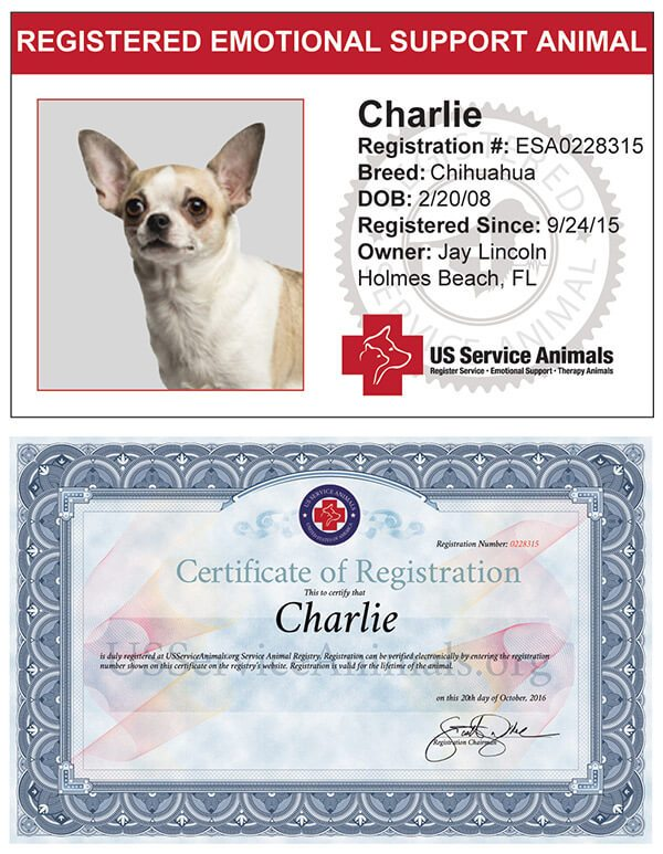 Register Your Emotional Support Animal Online | US Service Animals
